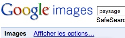 Google_options_de_recherche