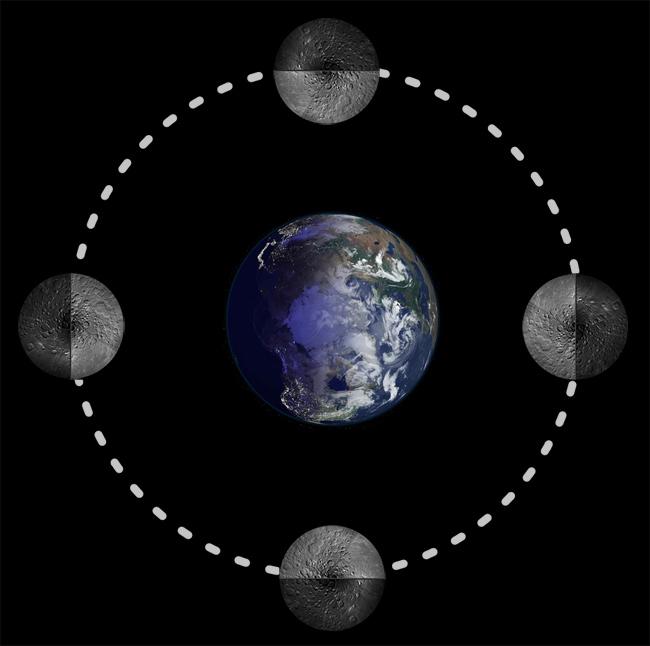 lune rotation