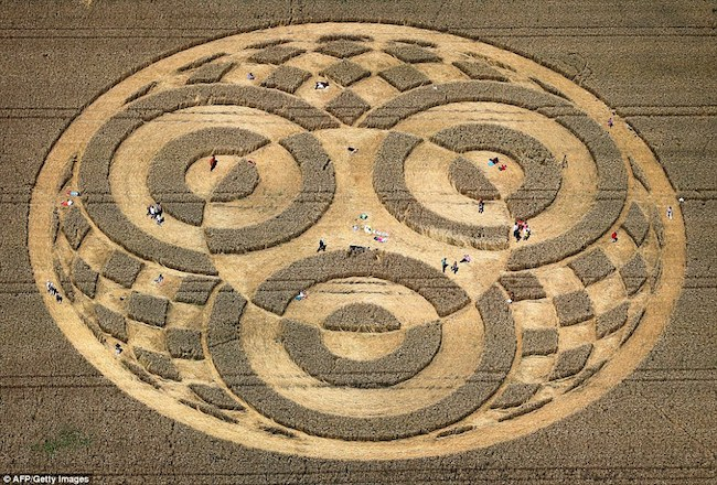 Crop_circle-allemagne-01